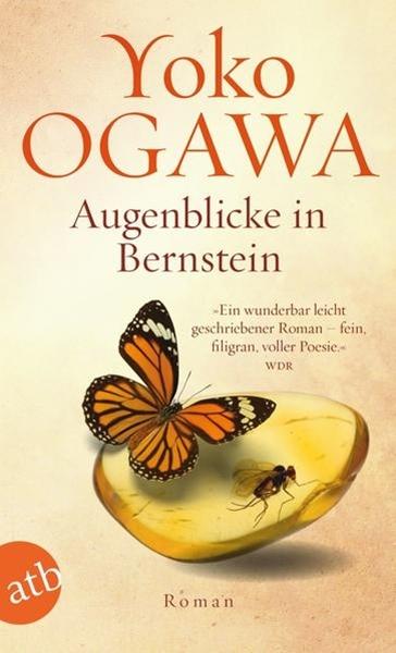 Bild von Ogawa, Yoko : Augenblicke in Bernstein