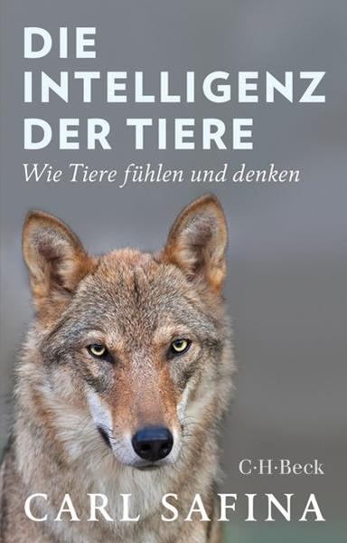 Bild von Safina, Carl : Die Intelligenz der Tiere