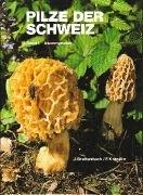 Bild von Breitenbach, Josef : Pilze der Schweiz 01. Ascomyceten
