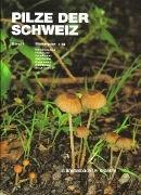 Bild von Breitenbach, Josef (Hrsg.) : Pilze der Schweiz 04. Blätterpilze 2. Teil
